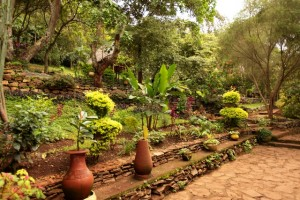 Garden at Karama Lodge and Spa in Arusha, Tanzania Africa