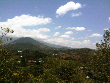 Suye Hill Forest Reserve in Arusha Tanzania Africa